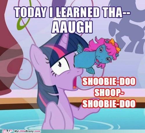 meme older gen seahorse twilight sparkle wtf - 6413953792
