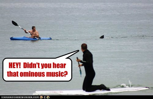 jaws,john williams,kayaking,Music,ominous,shark,warning,water