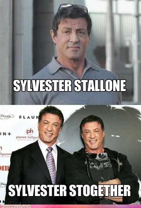 actor,celeb,funny,pun,Sylvester Stallone