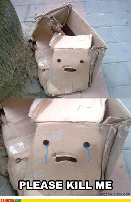 cardboard box,kill me now,the internets