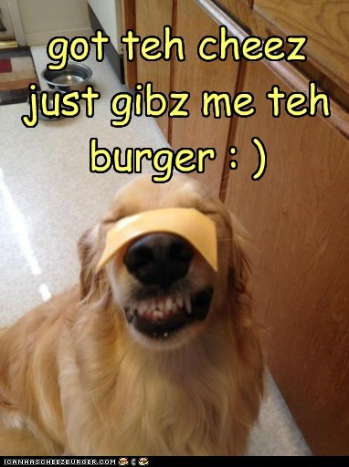 got teh cheez just gibz me teh burger : )