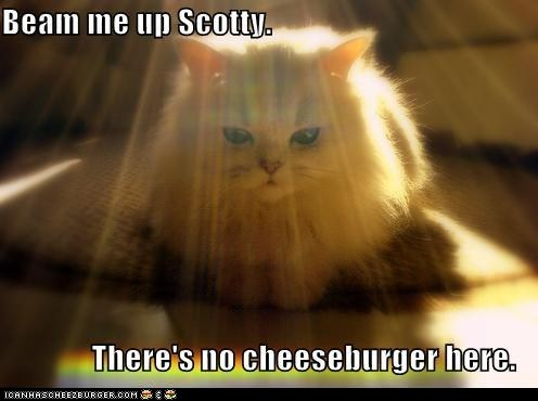 beam me up,Cats,cheezburger,classic,classics,enterprise,scotty,stark trek