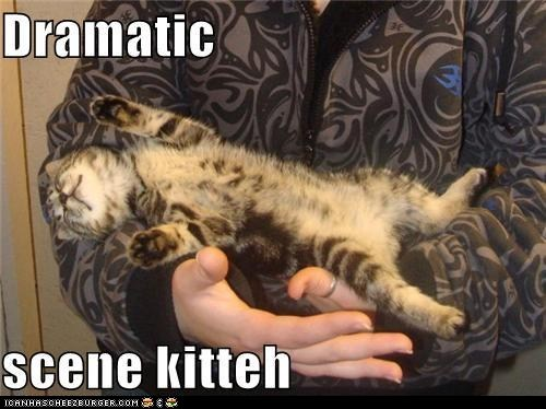 Cats classic classics collapse drama dramatic - 6414445824