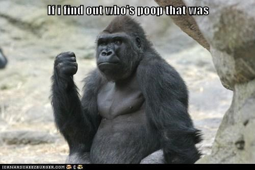 angry fist gorilla poop threat - 6414499840