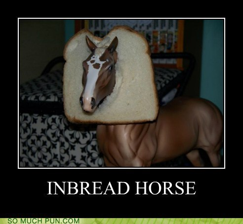 bread,cliché,double meaning,horse,in,inbred,literalism
