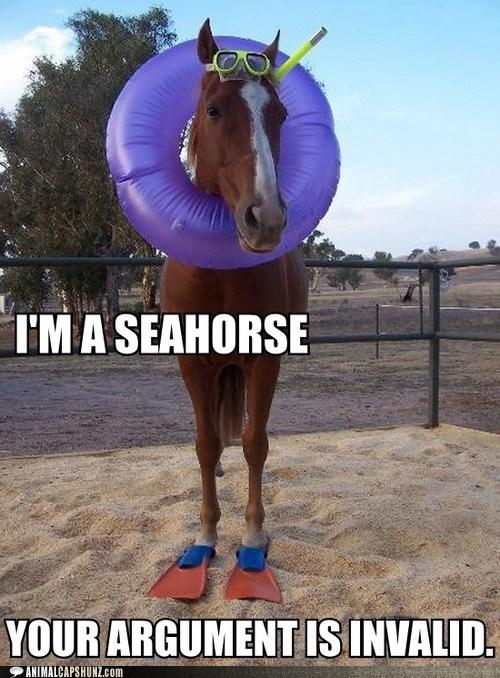 argument is invalid beach best of the week captions costume horse horses innertube puns seahorse seahorses snorkeling snorkle - 6414746880