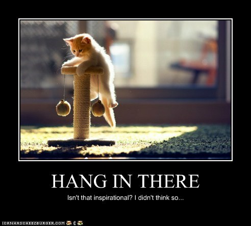 HANG IN THERE Isn't that inspirational? I didn't think so...