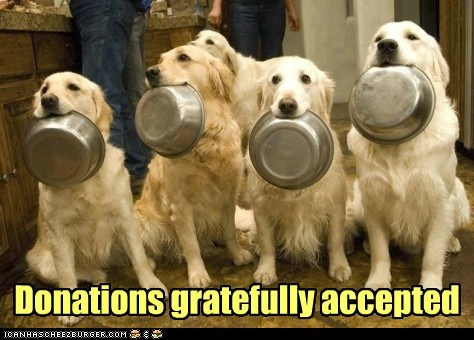 Funny dog meme of a bunch of dogs asking for food donations for their singing skills.