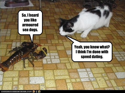 captions Cats creepy date lobster love romance speed dating - 6415252224