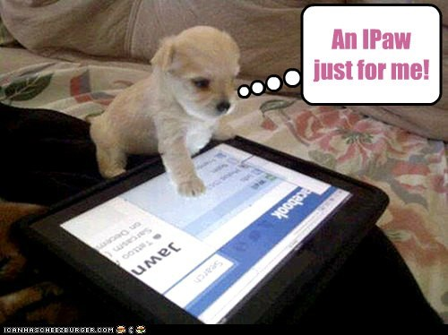 An IPaw just for me!