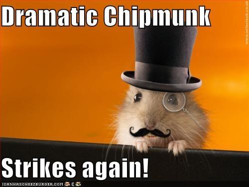 Dramatic Chipmunk Strikes again! - Cheezburger - Funny Memes