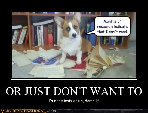 books,corgi,hilarious,read,ruined