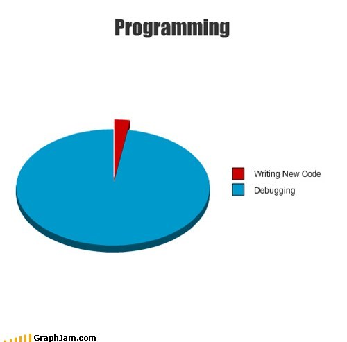 CS,debug,Pie Chart,programming,writing code