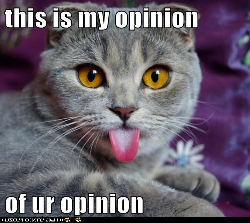 this is my opinion of ur opinion