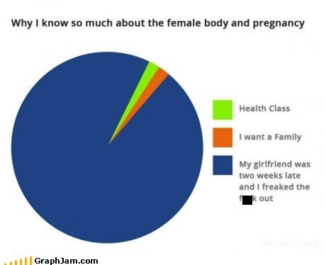 health class knocked up lady bits Pie Chart praying pregnancy - 6417027840