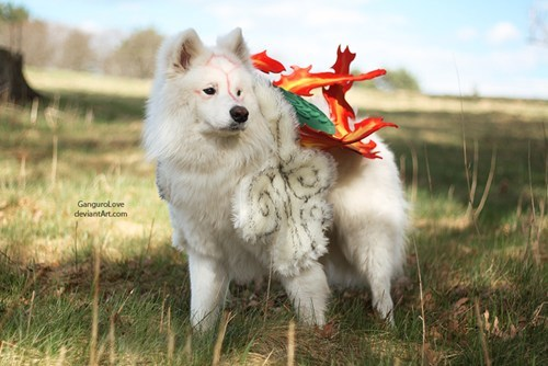 cosplay dogs Ōkami video games - 6417066240