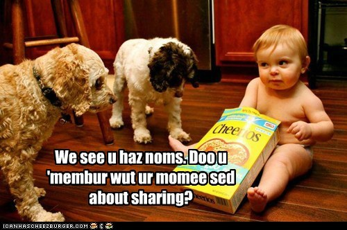 baby cereal cheerios dogs dogs of war sharing-isnt-caring what breed - 6417178368