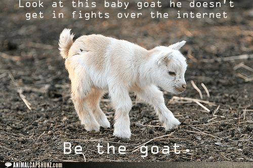 advice,baby,be the best,captions,fighting,fights,goat,goats,internet,look at it,the internet