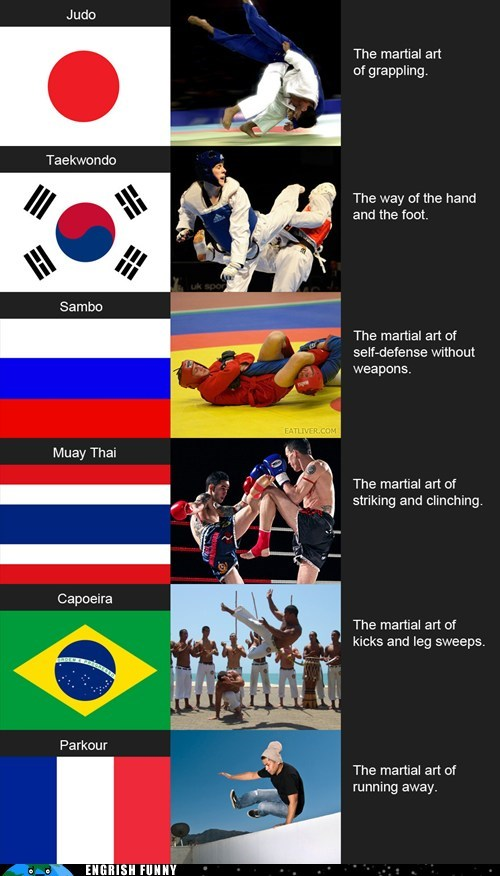 brazil,capoeira,france,Japan,judo,martial arts,mma,muay thai,parkour,russia,sambo,self defense,south korea,taekwondo,thailand