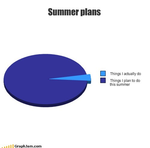 Pie Chart plans summer summer break