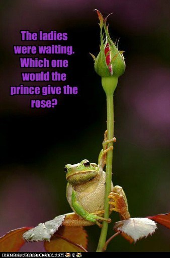 The ladies were waiting. Which one would the prince give the rose?