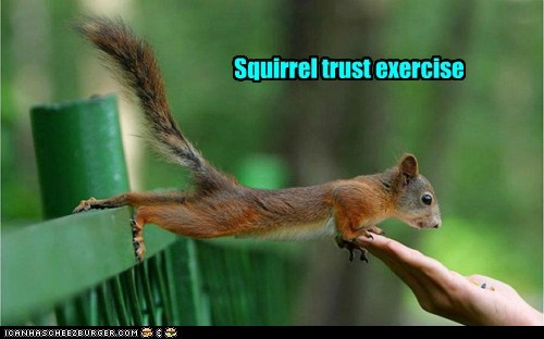 Squirrel trust exercise