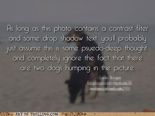 dogs humping inspriational photos - 6418158848