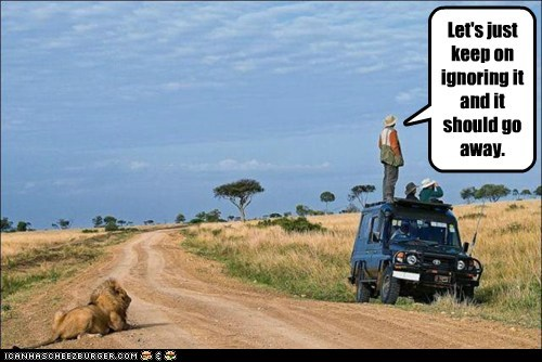 famous last words,go away,ignoring,lion,safari,scared,waiting
