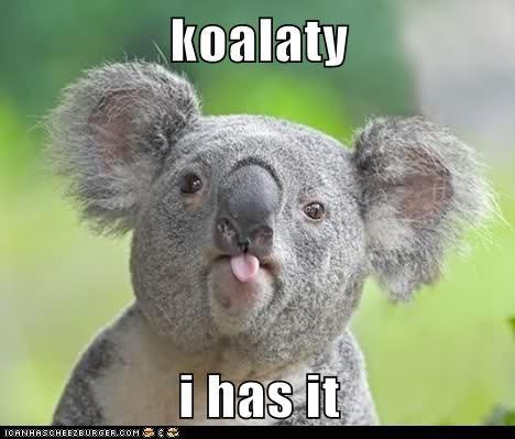i has it koala raspberry sticking tongue out taunting - 6418692096