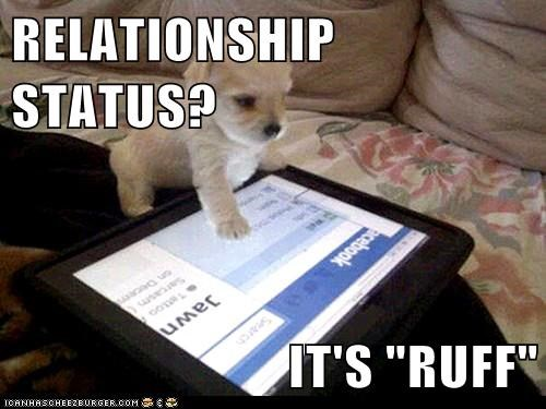 dogs Facebook Fail ipad puppy relationship status what breed - 6419344896