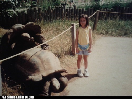 animal sex turtles zoo - 6419752704