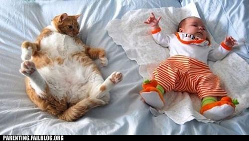 baby cat Photo - 6419956736