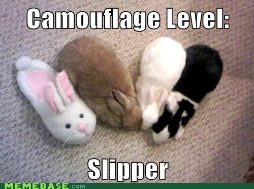 bunny camouflage level Memes slipper