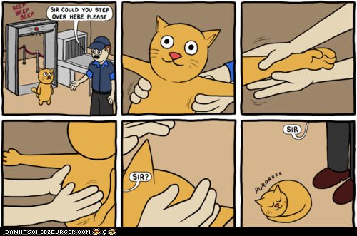 airports,Cats,comics,pat down,petting,purring,TSA