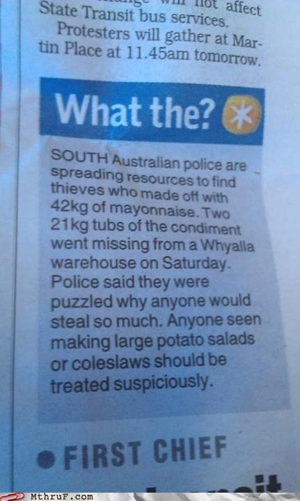 mayo mayo thief south australia what the - 6420667136