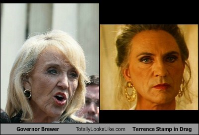 Governor Brewer Totally Looks Like Terrence Stamp in Drag