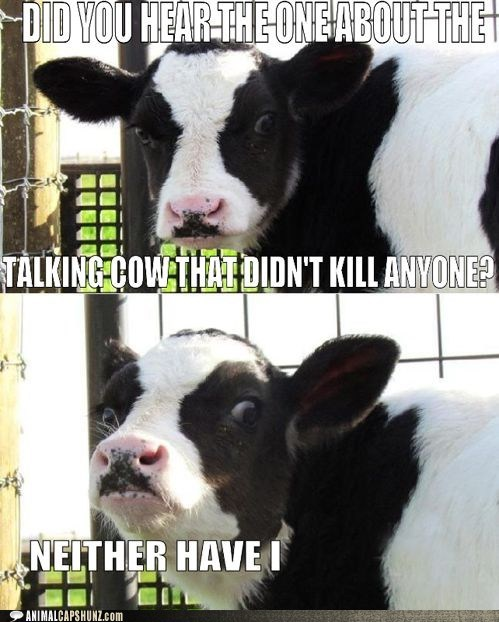 cow,evil,insane,kill,run,scary,talking,unrealistic
