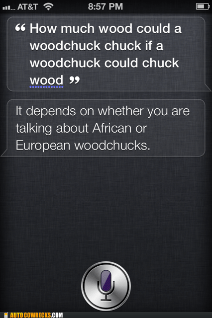 African or European Hall of Fame monty python siri swallows woodchuck - 6421358592