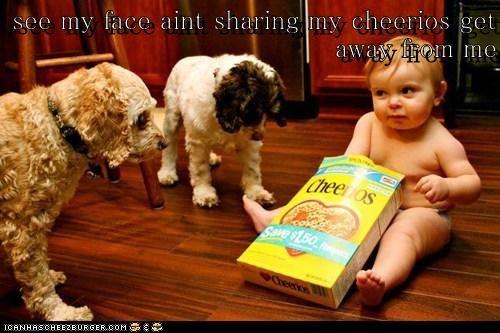 Cheezburger Image 6421513472