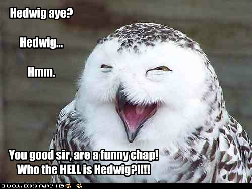 Hedwig aye? Hedwig... Hmm. You good sir, are a funny chap! Who the HELL is Hedwig?!!!!