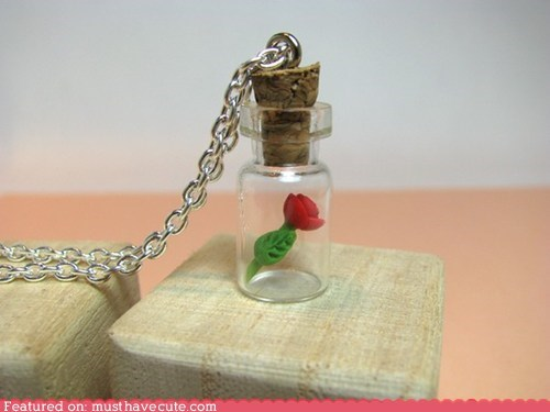 bottle,chain,miniature,necklace,pendant,rose