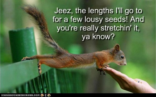 Jeez, the lengths I'll go to for a few lousy seeds! And you're really stretchin' it, ya know?