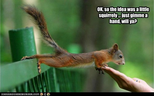 OK, so the idea was a little squirrely ... just gimme a hand, will ya?
