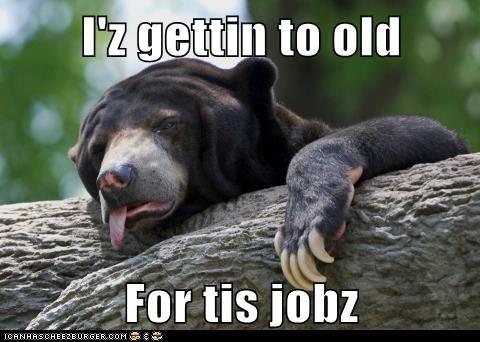 bear climbing job tired - 6422892544