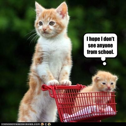 basket captions cart Cats embarrass kid mom school shopping - 6423284480