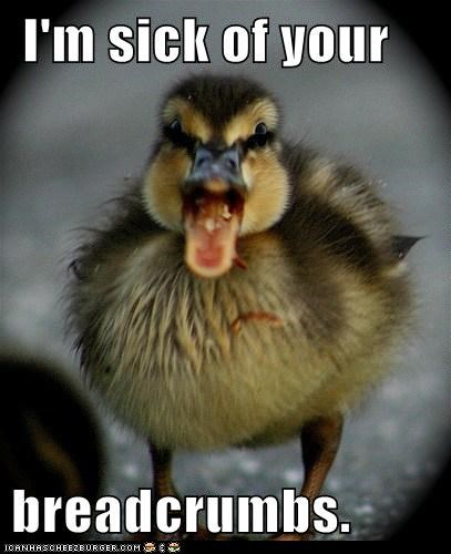breadcrumbs-tired,duckling,food,sick,yelling