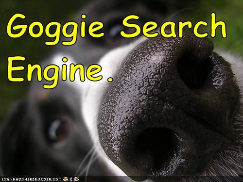captions dogs google nose search engine what breed - 6423903232