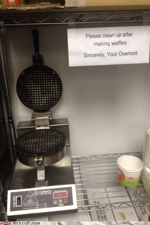 break room kitchen overlord waffle iron waffle maker - 6424592384