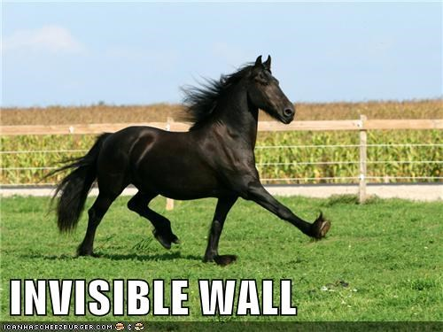crash horse invisible levels miming strut wall - 6424817664
