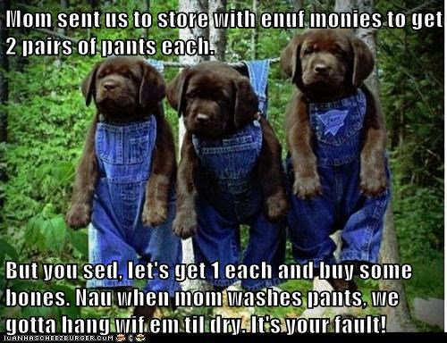 Mom sent us to store with enuf monies to get 2 pairs of pants each.   But you sed, let's get 1 each and buy some bones. Nau when mom washes pants, we gotta hang wif em til dry. It's your fault!